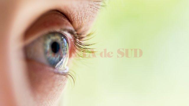 macro human eye