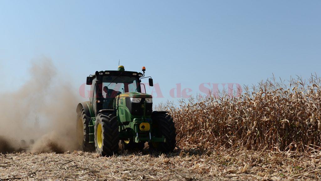 Mii de hectare de terenuri agricole din Oltenia au fost tranzacționate în acest an (Foto: economica.net)