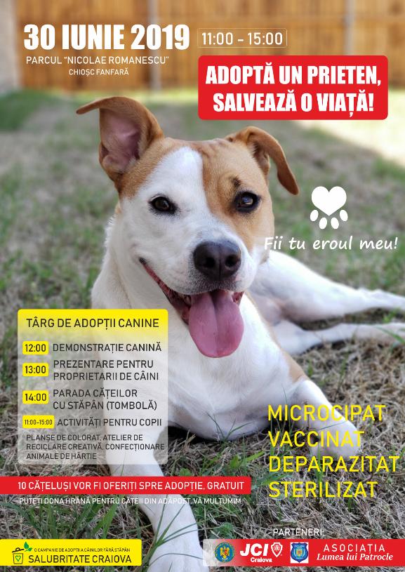 Nou Târg De Adopții Canine în Parcul Romanescu Din Craiova