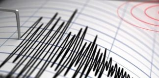 A fost cutremur azi-noapte! În ce orașe din România s-a resimțit