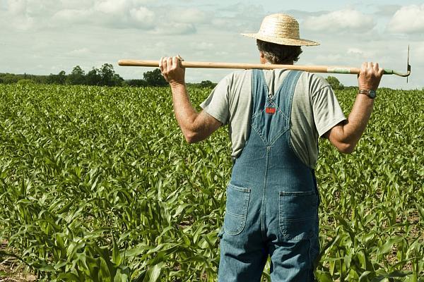 Fermierii au la dispoziţie 200 de milioane de euro pe an pentru investiţii în infrastructura de irigaţii