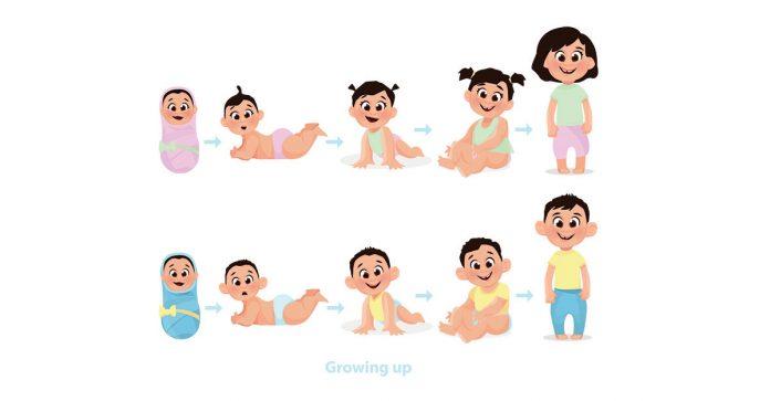 Cum crește bebelușul în primele 6 luni