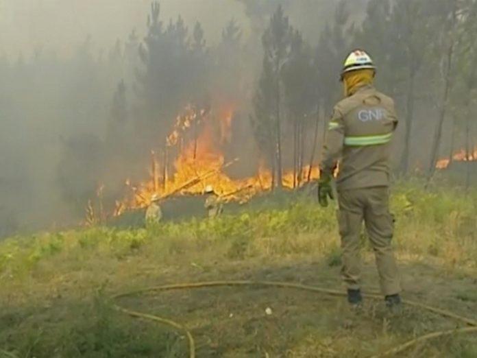 Centrul Portugaliei, cel mai afectat de incendiile de vegetaţie
