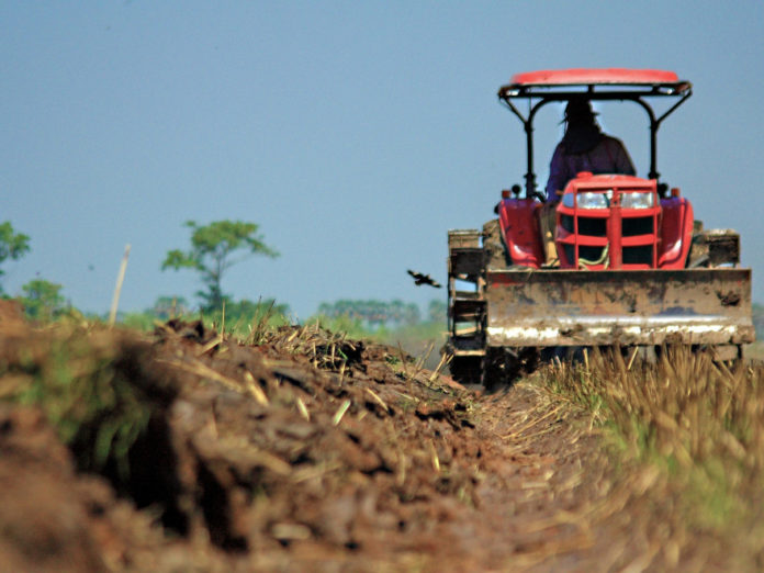 AFIR: Finanţări neramburabile de câte 15.000 de euro pentru micii fermieri