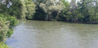 Doljean care dispăruse de acasă, găsit înecat în Jiu