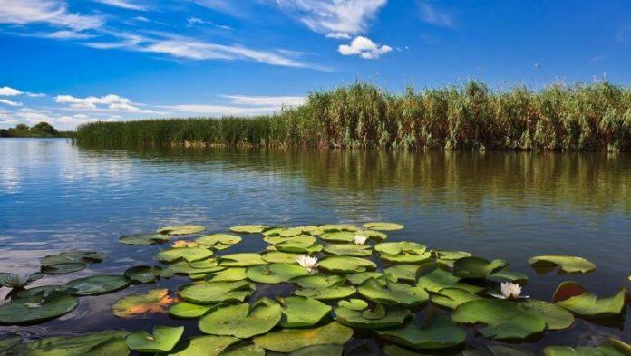 Hotelurile plutitoare din Deltă, tot mai solicitate de turişti