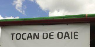 Tocanul de oaie, atestat pe Transalpina de ministrul Agriculturii
