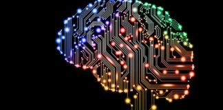 Intel a dezvoltat procesorul care imită creierul organismelor vii