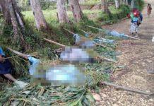 Masacru în Papua Noua Guinee: Cel puțin 15 femei și copii au fost uciși