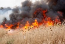 Măsuri de prevenire a incendiilor pe tereneurile agricole