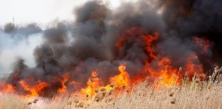 Atenţionare MAE: Risc ridicat de incendii de vegetaţie în Grecia