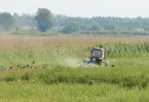 Liceele agricole promovate de organizaţii neguvernamentale