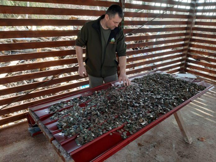 Peste 30 de kg de monede, scoase din Peștera Urșilor (Foto: radiocluj.ro)