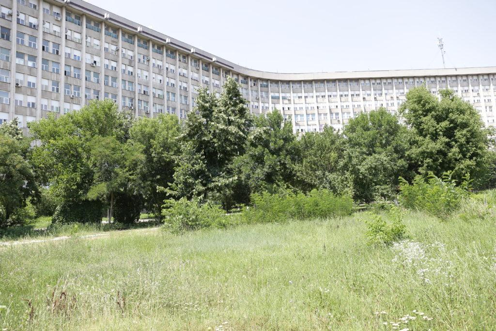 Părculeţul din spatele Spitalului Judeţean Craiova