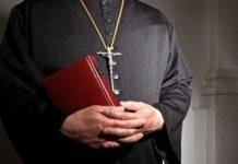 Preot atacat de viespi în Botoşani