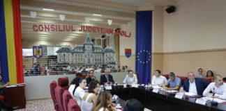 """Cum se """"încalecă"""" un drum judeţean cu DE Craiova-Piteşti"""