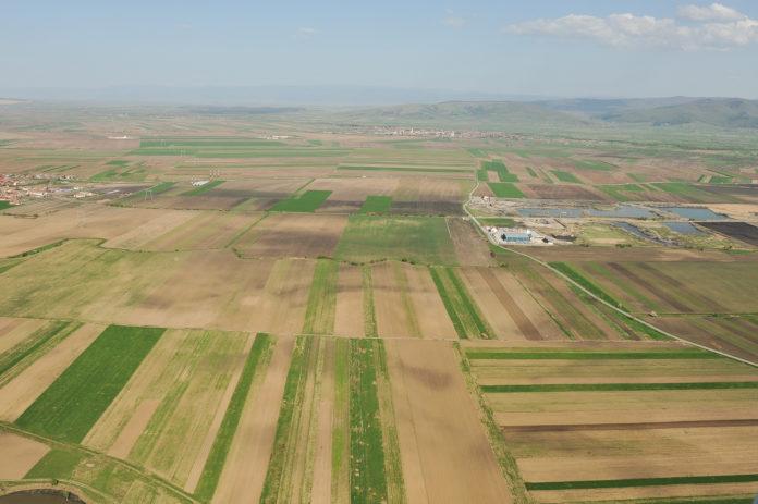 Anchetatorii susţin că cei doi inculpaţi au cerut şi obţinut subvenţii pentru suprafețe de teren pe care nu le dețineau