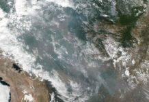 Imagini dramatice cu focul care distruge 20% din oxigenul Planetei