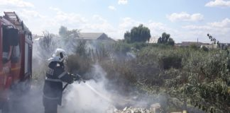 Incendiu în zona Balta Craioviţa