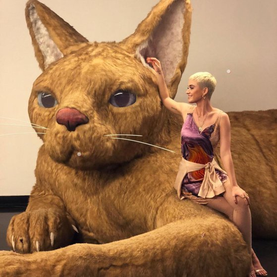 Katy Perry, acuzată de comportament sexual nepotrivit
