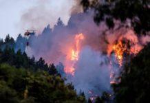 Incendiul din insula Gran Canaria a scăpat de sub control