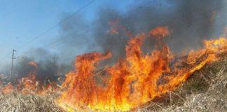 Incendiu puternic, pe drumul spre mare.