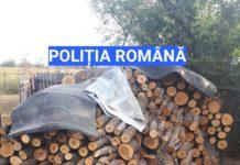 Percheziții pentru tăieri ilegale și sustragere de material lemnos în trei gospodării din Olt