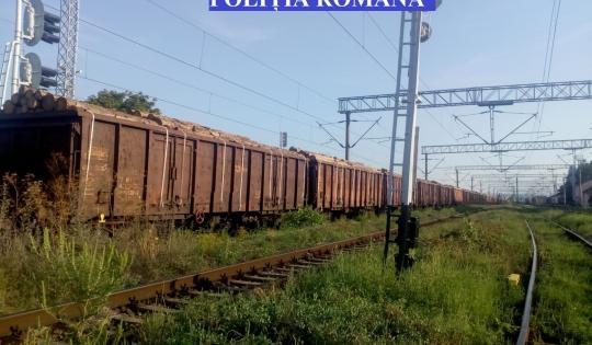 Tren care transporta lemn fără acte, oprit de poliţişti