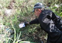 Craiova: Începe a treia etapă de deratizare pe domeniul public din acest an