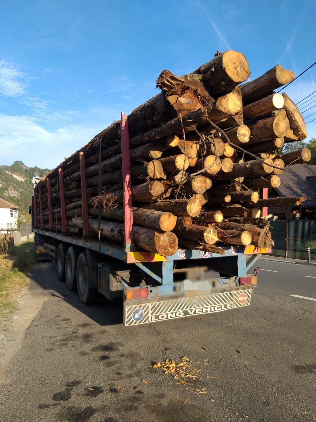 Inginerul silvic a a desfăşurat acte de transport şi comerţ cu material lemnos (657 transporturi)