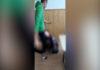 Gorj: Anchetă la Liceul din Țicleni, după o bătaie între elevi