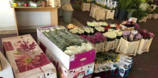 Razie printre comercianţii de flori