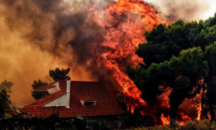 Trei incendii de vegetaţie s-au unit şi au format unul uriaş