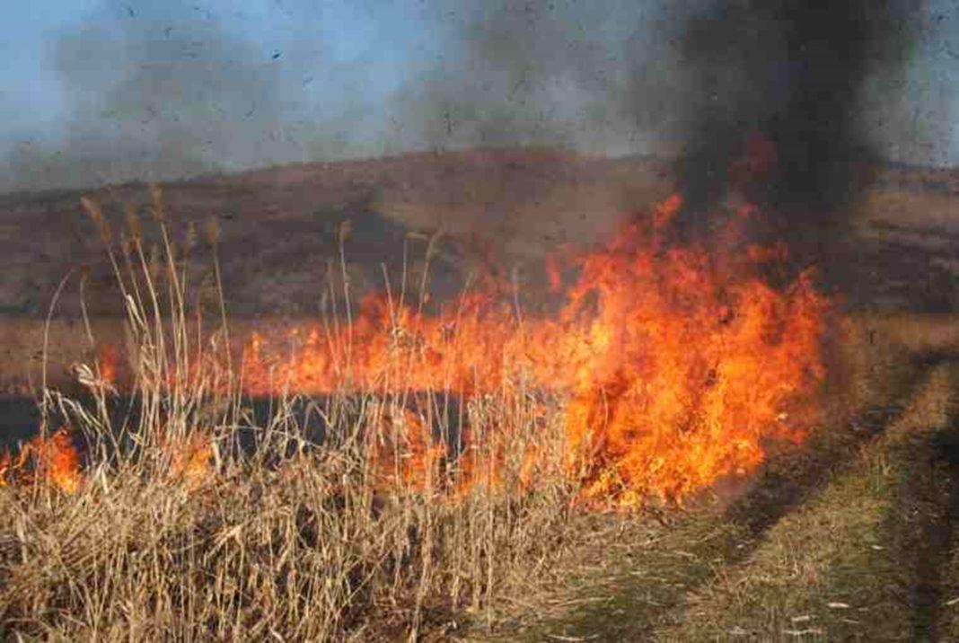 Incendiu de vedetație uscată în cartierul craiovean Mofleni