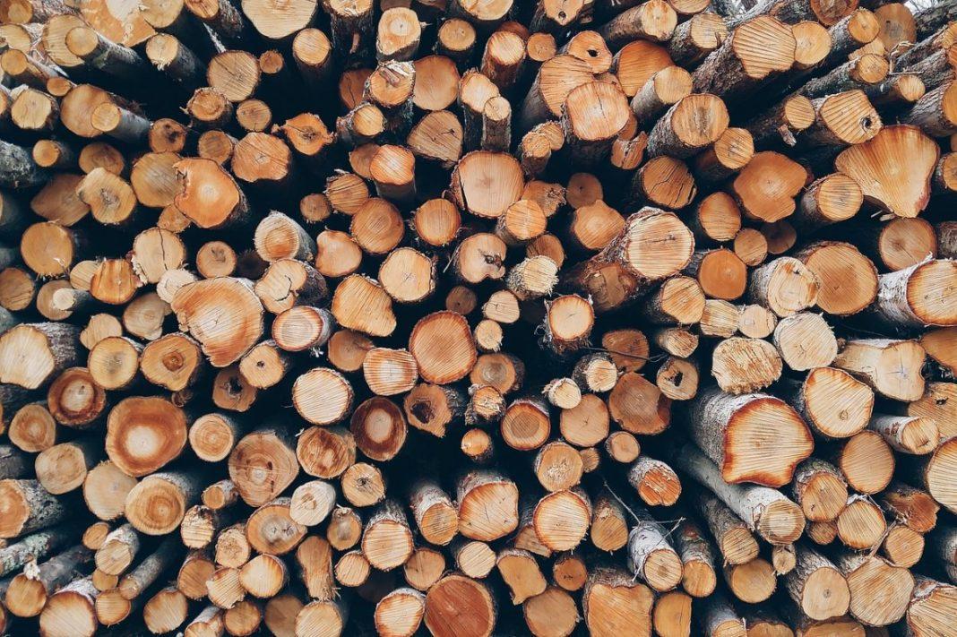 Gorj/ Transport ilegal de lemne, depistat la Tismana