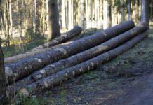Doi tineri maramureșeni morți la locul de muncă, în Austria