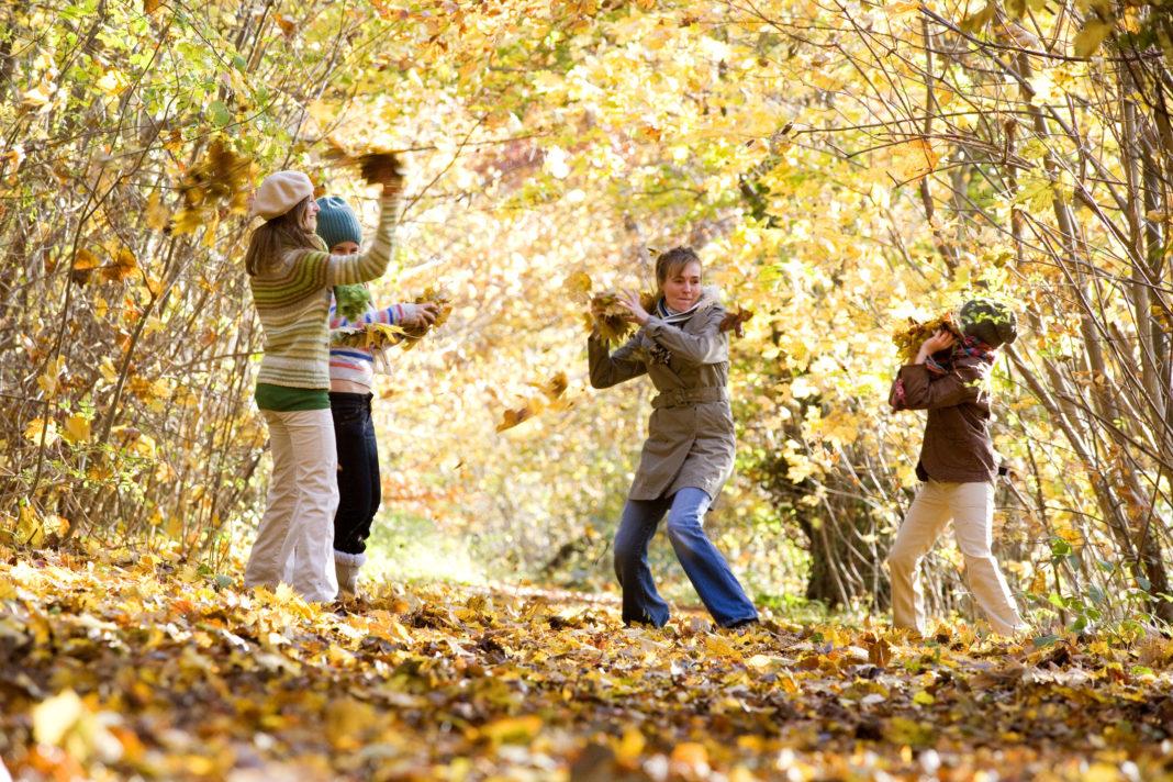 30 de activităţi interactive toamna pentru părinţi şi copii