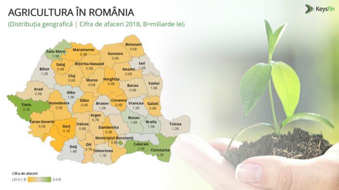 Agricultura românească creşte în 2019 cu jumătate de miliard de euro
