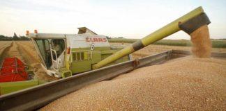 În octombrie 2014, Claudia Ene a fost condamnată definitiv într-un dosar de evaziune fiscală cu cereale