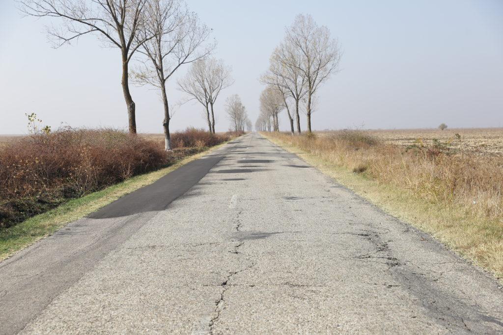 Pentru modernizarea celor 67 km ai drumului Craiova - Cetate se luptă firme din România şi Turcia