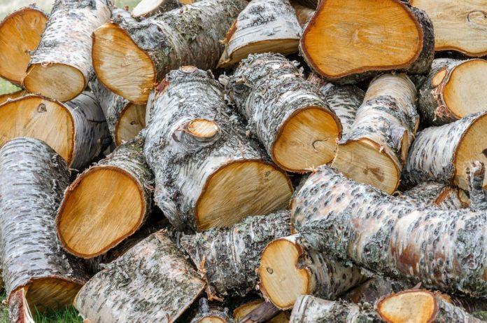 Gorj/ Transport ilegal de lemne, depistat de poliție la Slivilești