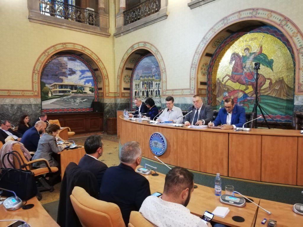 """Consiliul Local Craiova a aprobat cofinanţarea de 297.500 de euro pentru lucrările de înlocuire a gazonului de pe """"Oblemenco"""""""