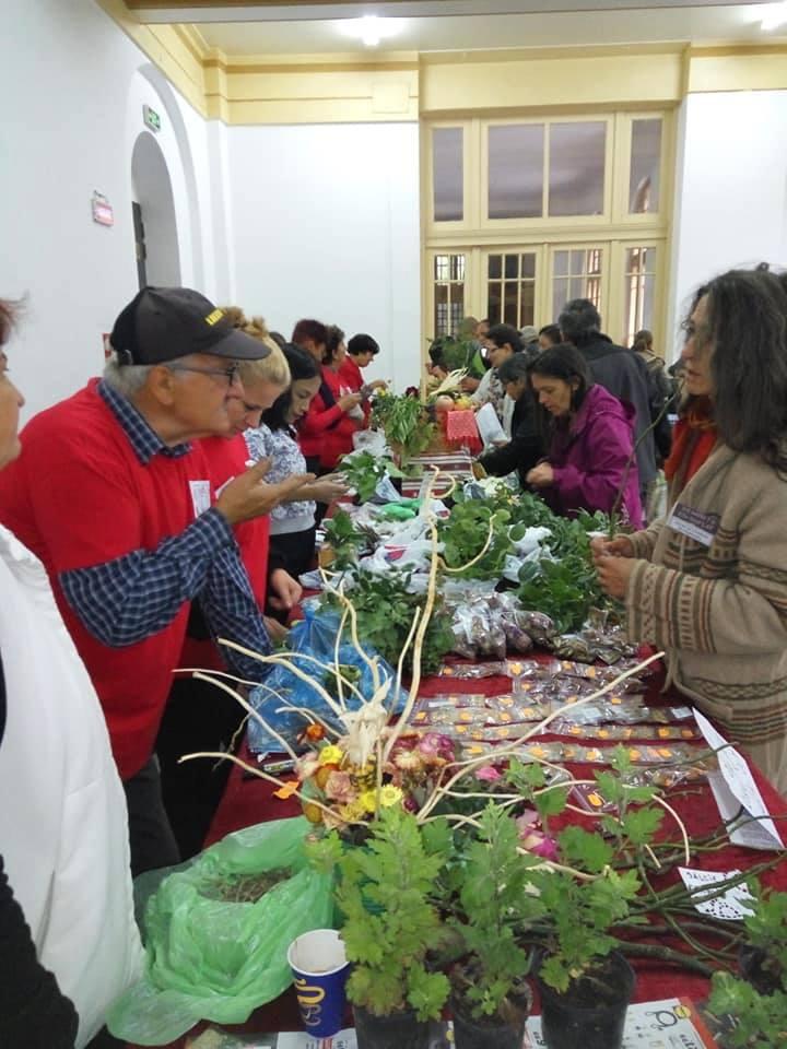 Craiova a găzduit al doilea târg de semințe autentice românești