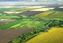 Cei doi inculpaţi au fost acuzaţi că au declarat la APIA terenuri agricole pe care nu le deţineau în proprietate sau folosinţă.