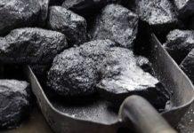 Doi tineri au reușit să fure o tonă de cărbune de la CEO cu ajutorul unei căruțe