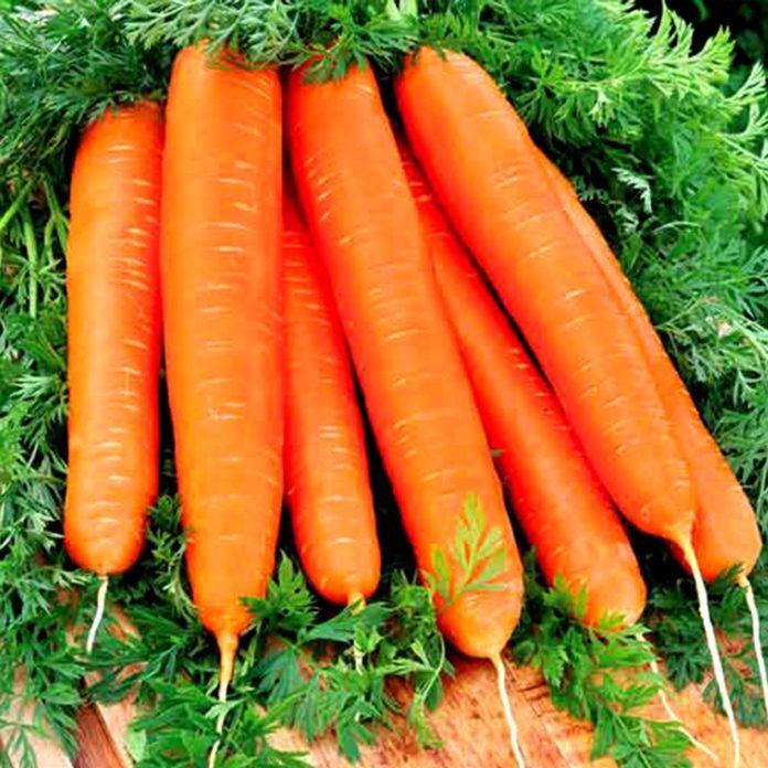 Morcovul, leguma cu puteri magice