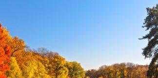 Vremea se încălzește de astăzi în toată țara. Temperaturile vor fi cuprinse între 8 și 16 grade, anunță meteorologii.