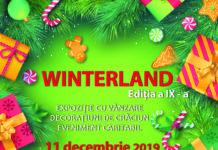 Târgul de Crăciun WINTERLAND, 2019, la Universitatea Craiova