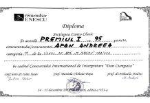 Andreea Apan a obţinut premiul I