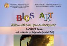 Atelier creativ organizat de Muzeul Olteniei la Școala Gimnazială Ostroveni!